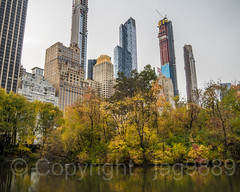 The Pond, Central Park, New York City (jag9889) Tags: 157west57thstreet 2014 2018 20181112 architecture autumn building cp carnegie57 centralpark centralparksouth colors condominium fall foliage forest hotel house lake landmark landscape luxury manhattan mixeduse modern ny nyc nycparks newyork newyorkcity one57 outdoor park parkhyatt pond residential see skyscraper thebillionairesbuilding tree usa unitedstates unitedstatesofamerica wasser water jag9889