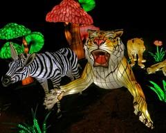 Luminous Fauna & Flora (Viejito) Tags: cne canadiannationalexhibition theex toronto ontario canada geotagged geo:lat=43635427 geo:lon=79411924 canon s100 canons100 powershot enercarecentre legendsofthesilkroad ddmentertainment lantern festival silk wire lights aladdin 1001nights antoinegalland youhennadiab genie cans2s tiger zebra lion flower mushroom toadstool grass 十五瞑 上元節 元宵節 上元节 元宵节 china