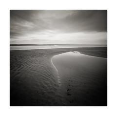 Alnmouth, Nortumberland (DavidO'Brien) Tags: pinhole stenope zero 2000 ilford film panf medium format blackandwhite square alnmouth northumberland lensless