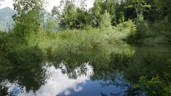 Rückhaltebecken Jägerberg (Aah-Yeah) Tags: jagerbergl jägerberg jagerberg rückhaltebecken deponie sanierung grassau achental chiemgau bayern schnappenberg