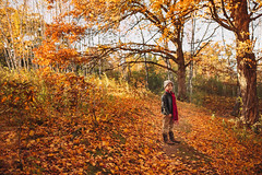 The land of autumn (Elizabeth Sallee Bauer) Tags: nature active autumn backlight beautyinnature boy child childhood country fall family forest fresh fun girl golden goldenlight green happiness hiking kid light nonurbanscene october orange outdoors outside playing pumpkin qualitytime together togetherness trees wilderness woods youth