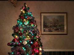 Christmas Tree 3 (Lux Llama Productions) Tags: christmas lights holiday holidays winter december jan january dec decor decorations decoration prop jesus usa us unitedstates florida bocaraton house suburb hot light led cool awesome santa sleigh reindeer deer trees tree orb