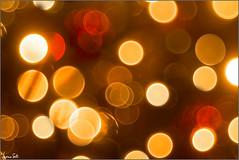 Natale (Luciano Silei - sky7) Tags: buonnatale natale christmas merrychristmas feliznavidad joyeuxnoël lucianosilei canon6d meyergorlitz trioplan manualfocus vintagelens oldlens m42 bokeh bubbles