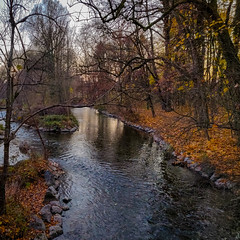 Autumn (MAKER Photography) Tags: autum munich germany water stream leaves leaf tree trees stone stones rock rocks island sky branch smartphone phone oneplus 6