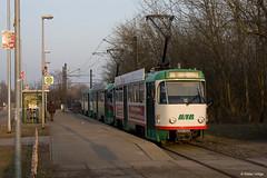 Magdeburg 1222+1223+2132 Neustädter See, 04.03.2011 (Tramfan2011) Tags: deutschland tatra ckd t4d magdeburg germany tram strasenbahn tanvia tramway