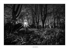 Daylight... (michel di Méglio) Tags: sun star etoile soleil nikon nikond7100 sigma1020 bw filternd1000 povence france noiretblanc light lumere shadow ombre neutraldensity