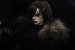Loki (Sugar Lokifer) Tags: abadon luts ssdf delf bjd ball jointed doll