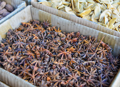 Star anise (Illicium verum) and anise seed (phuong.sg@gmail.com) Tags: alternative anise aniseed aroma aromatic asia ayurveda ayurvedic background badiyan brown chinesestar closeup collection cook culinary curry detail dried eat exotic flavor food health herb illicium indian medicinal natural nature prepare seasoning seed shikimic spice star staranise supplement texture therapeutic traditional verum