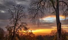 """Birds"" (Vest der ute) Tags: xt20 spain trees sunset birds sky clouds lateafternoon fav25 fav200"