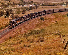 Rio Grande #183/Coal Creek Canyon, Colorado-1974. (Wheatking2011) Tags: rio grande 183 coal creek canyon colorado june 14 1974