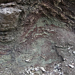 Paleosol (Mill Knob Member, Slade Formation, Upper Mississippian; Clack Mountain Road Outcrop, south of Morehead, Kentucky, USA) 1 thumbnail