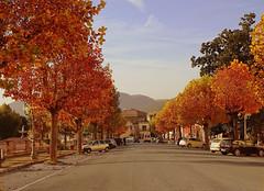 Una giornata autunnale (Tilly Sfortunato) Tags: autunno ciociaria roccasecca