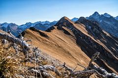 Lagjoch (stefangruber82) Tags: alpen alps tirol tyrol lechvalley lechtal herbst fall mountains berge