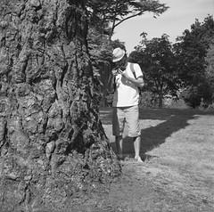 Ed, Somerleyton, Norfolk (nikolaijan) Tags: fuji neopan film 120 somerleyton treeportrait tree blackandwhite yashica 124g 6x6 gianttree england norfolk iso400