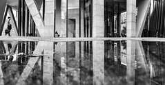 326/365 Pano puddle (chesterr) Tags: 365the2018edition 3652018 day326365 22nov18