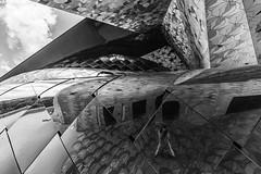 play whis geometry (Rudy Pilarski) Tags: geometry géométrie geometria graphique géométrique nikon nb bw bâtiment building reflet reflection structure france francia forme form monochrome moderne modern contraste urbain urban urbano paris people personne selfie tamron thebestoffnikon thepassionphotography d7100 1020