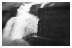 (2018) (phamnes) Tags: nikoncoolscan norway rana autumn xtol apx100 agfaphoto blackandwhitephotography ishootfilm blackandwhitefilm 35mm 135film slr lensbaby20 lensbaby nikonf301 nikon
