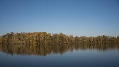 Ligne d'horizon (Titole) Tags: trees sky water reflection nicolefaton titole trévoix bassindetrévoix