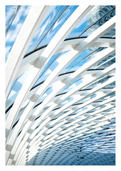 Roof (leo.roos) Tags: roof dak metro lijne underground architectuur architecture ns spoorwegen rail railways centraalstation cs denhaagcentraal denhaag thehague voigtlanderprojektos12580 projektos8025 zett150projector slideprojector projectorlens projectionlens darosa leoroos lightrail