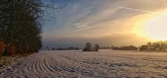 Winter light (catha.li) Tags: lgg4 sweden naturewatcher soe winter light