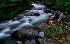 Solitude (Jim Nix / Nomadic Pursuits) Tags: america jimnix luminar macphun nomadicpursuits sony sonya7ii roadtrip travel montana stream river creek forest woods