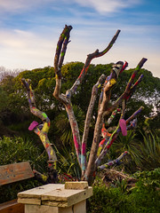 The Shoe Tree (Steve Taylor (Photography)) Tags: painted daubed jandal sandal flipflop art bench table colourful newzealand nz southisland canterbury christchurch flax tree paint trunk sculpturepark southnewbrighton