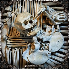 Those who are familiar with historic coats of arms will no doubt recognize some of the symbols that Rint artistically reinterpreted out of bones. Perhaps the first thing people usually notice is the raven pecking out the eye of a skull. This dark scene re (Sedlec Ossuary Project) Tags: sedlecossuaryproject sedlec ossuary project sedlecossuary kostnice kutnahora kutna hora prague czechrepublic czech republic czechia churchofbones church bones skeleton skulls humanbones human mementomori memento mori creepy travel macabre death dark historical architecture historicpreservation historic preservation landmark explore unusual mechanicalwhispers mechanical whispers instagram ifttt