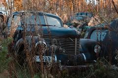 Opel Kapitän (mariburg) Tags: rotten marode alt old rostig rustycars canonef2470mmf28liiusm canoneos6d opel