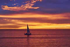 Cali Sunset (nischal317) Tags: sunset california vacation nature naturallight sonyalpha sony sonya6000 50mm sailboat landscape