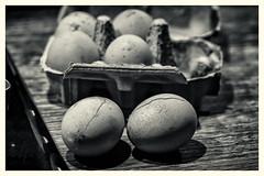 oops (Redheadwondering) Tags: minolta100mmf28macrolens sonyα7ii 118picturesin2018 macro 96eggs 96 eggs blackwhite bw