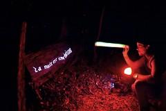 La nuit verte (Lucie Guinjard) Tags: la nuit est une épaisseur verte bordeaux cenon palmer