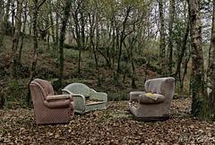 Integración del Mobiliario en el Medioambiente (JMFVERAS) Tags: 2019 monfero bosque forrest trees arboles mobiliario furniture hojas leaves denuncia protesta