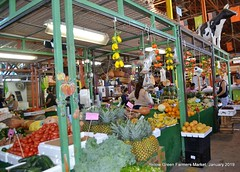 066-49730773_2187036341339926_1916082342078709760_o (YellowGreenFarmersMarket) Tags: farmersmarket florida fortlauderdale fresh food fruit fl floridabeach freshandhearty fruits fortlauderdalefl aventura art bakery cutfruit craft coralsprings daviefl daniabeachfl davie dania eat empenadas vegetables realfood pembrookpines weston yellowgreenfarmersmarket pembrokepinesfl jewelry pet restaurant real westonfl westpalmbeach beach goodfood gifts greens hollywoodfl hollywoodflorida homesteadfl homesteadflorida hallandalebeach homestead hallandale miamibeach juice juicing market olives miami miramar miamigardens miamilakes miamifl nogmo organic southfl coopercity oaklandpark salads smoothies sofl sunrise tasty tapas vegetable z