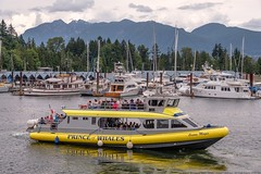 Whale Watching Tours (MIKOFOX ⌘ The Purge IS Wrong!) Tags: canada showyourexif boat xt2 mountains vancouver learnfromexif july provia marina yacht fujifilmxt2 mikofox summer britishcolumbia xf18135mmf3556rlmoiswr