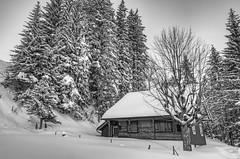 Rigi Panoramic Trail, Switzerland. (j1985w) Tags: switzerland mountain trees snow rigi sky cabin building