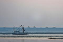 der Krabbenkutter fährt zum Fang (Ossiland) Tags: ostfriesland ems kutter fischer krabbenfischer schnee deich winter
