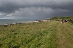 La procession (Gisou68Fr) Tags: ecosse scotland mariage wedding pré meadow beach plage chapelle chapel nuages clouds gris grey temps météo weather fence clôture