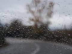 Drops (Fotis Mandalis) Tags: drops rain road trees xanthi greece 2018 macedoniagreece makedonia macedoniatimeless macedonian macédoine mazedonien μακεδονια македонијамакедонскимакедонци