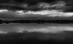 In Silence (henriksundholm.com) Tags: bw blackandwhite monochrome landscape nature lake water reflections shadows clouds sky lowerseletarreservoir minimalism silence tranquil calm dark sad scenery hdr singapore southeast asia