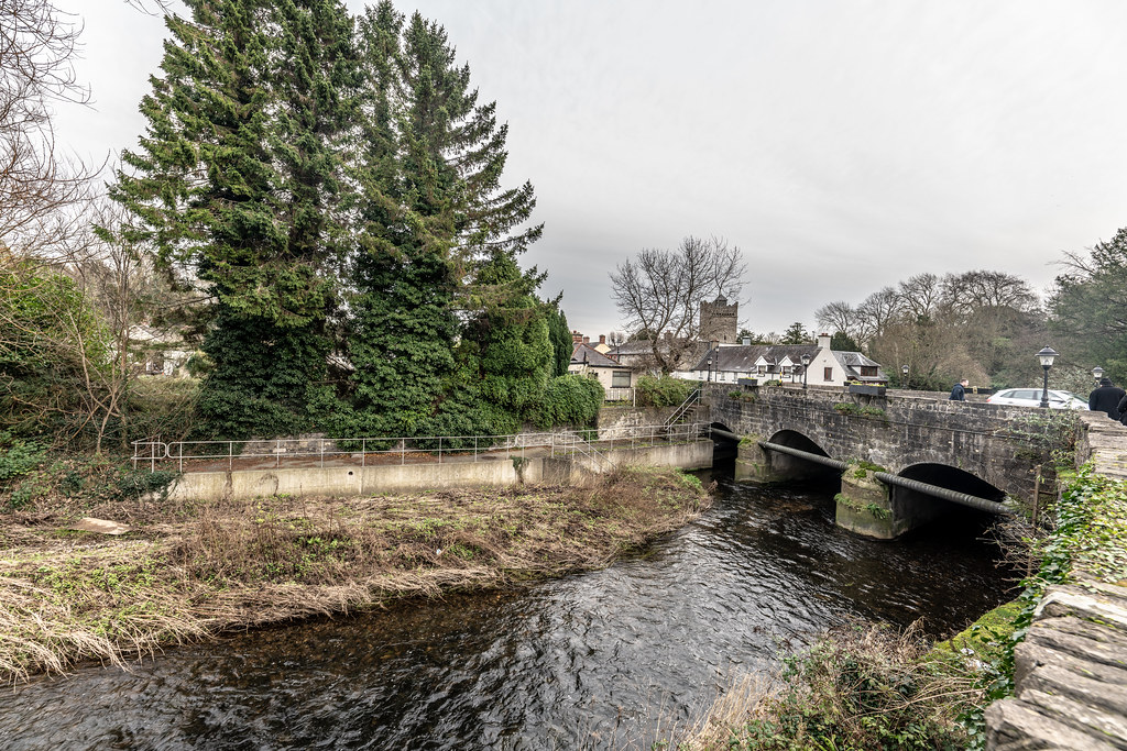 EARLIER THIS WEEK I VISITED LEIXLIP [COUNTY KILDARE]-148585