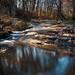 Croydon Creek Long Exposure