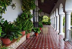 Ermita de Belen, Zafra (Jocelyn777) Tags: plants foliage greenery courtyard patio azulejos ceramictiles arches churches hermita hermitage zafra extremadura spain travel cloister