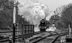 The double-header approches (Peter Leigh50) Tags: great gcr central railway railroad rail train trees track bridge locomotive steam blackandwhite black fujifilm fuji five 5 45305 70013 monochrome mono