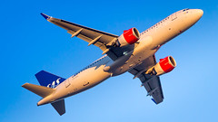 Airbus A320-251N LN-RGL SAS Scandinavian Airlines (William Musculus) Tags: airport spotting aviation plane airplane lnrgl sas scandinavian airlines airbus a320251n fra eddf frankfurt am main rhein frankfurtmain fraport flughafen sk a320neo a320200neo neo william musculus