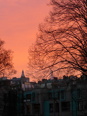 190118a6 (bbonthebrink) Tags: paris january 2019 sunrise orange pink tree silhouette