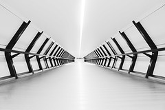 Crossrail Place (Adams Plaza Bridge) (Dan H Boyle Photography) Tags: crossrail canarywharf crossrailplace adamsplaza blackandwhite canon canondslr 700d canon700d monochrome london architecture bridge symmetrical symmetry