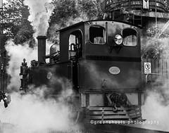 The Power of Steam (explored) (Keith Gooderham) Tags: copyrightgreenshootsphotography newzealandsouthisland shantytown greymouth steam train locomotive bristol england