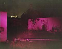 (✞bens▲n) Tags: mamiya 7ii kodak ektacolorgold 400 80mm f4 film analogue 6x7 haikyo abandoned hotel walls purple light dark night longexposure tree flowers