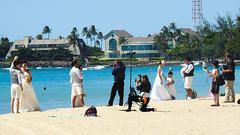 Wedding Pictures at Ala Moana Beach Park (jdnx) Tags: alamoanabeachpark wedding