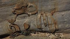 181102ManyPools7843w (GeoJuice) Tags: usa utah zionnp hikes geography geojuice